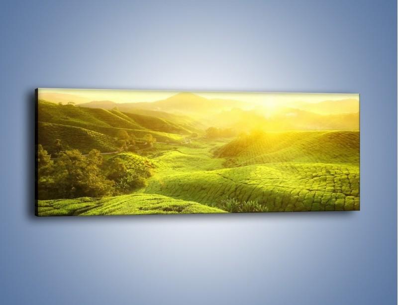 Obraz na płótnie – Zieleń w dolinie – jednoczęściowy panoramiczny KN1204A