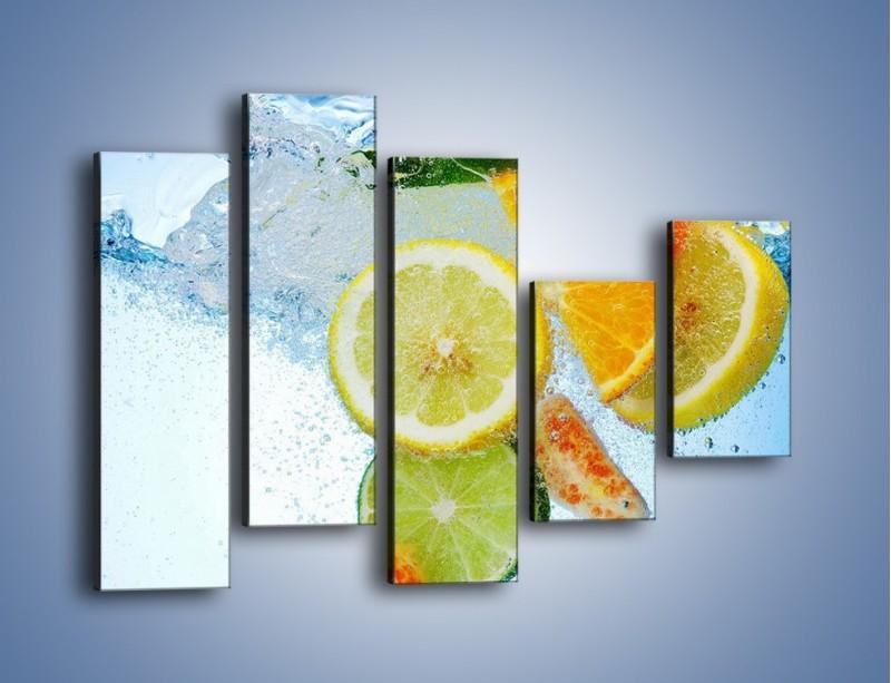 Obraz na płótnie – Zatopione plastry owoców – pięcioczęściowy JN057W4