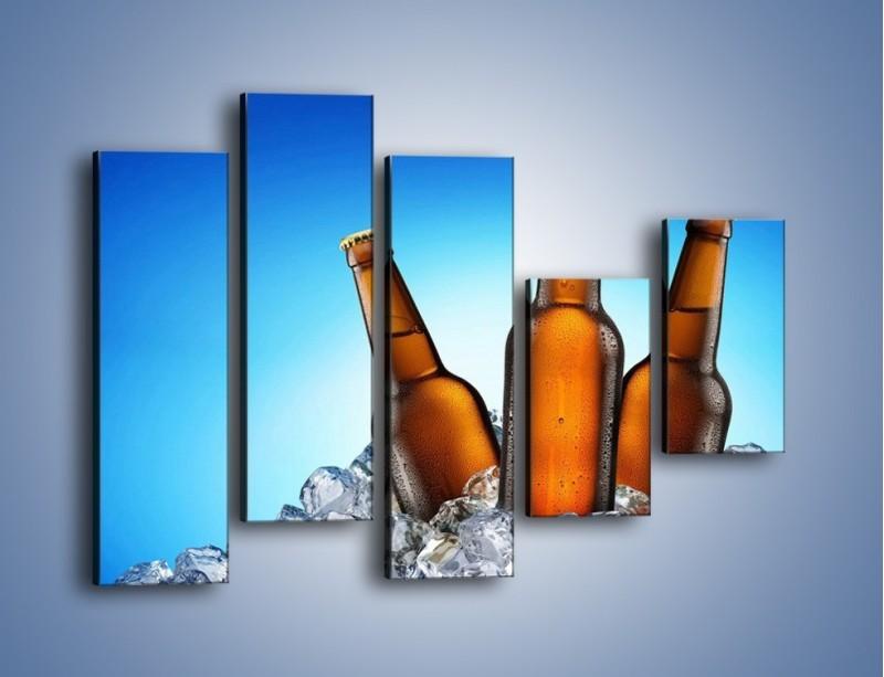Obraz na płótnie – Szron na butelkach piwa – pięcioczęściowy JN075W4