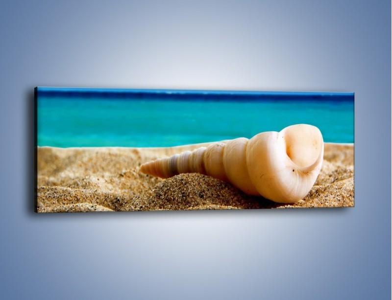 Obraz na płótnie – Czy uda się zobaczyć ślimaka – jednoczęściowy panoramiczny KN1210A