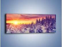 Obraz na płótnie – Choinki w śnieżnej szacie – jednoczęściowy panoramiczny KN1220A