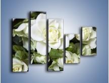 Obraz na płótnie – Białe róże na stole – pięcioczęściowy K131W4