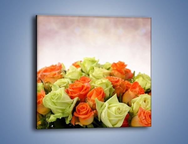Obraz na płótnie – Dwa kolory w róży – jednoczęściowy kwadratowy K132