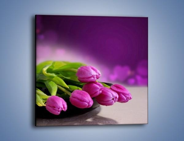 Obraz na płótnie – Tulipany w kolorze lawendy – jednoczęściowy kwadratowy K133