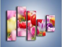 Obraz na płótnie – Boso przez tulipany – pięcioczęściowy K344W4