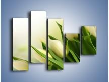 Obraz na płótnie – Białe tulipany na zgodę – pięcioczęściowy K400W4