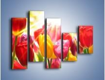 Obraz na płótnie – Bajecznie słoneczne tulipany – pięcioczęściowy K428W4
