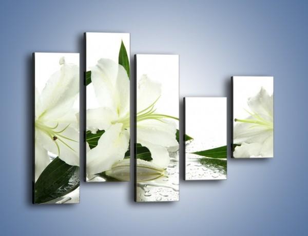 Obraz na płótnie – Czysta biel kwiatów – pięcioczęściowy K633W4