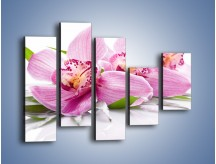 Obraz na płótnie – Biały kwiatowy stół – pięcioczęściowy K688W4