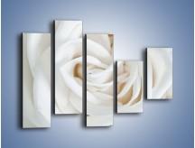 Obraz na płótnie – Biel róży za dnia – pięcioczęściowy K709W4