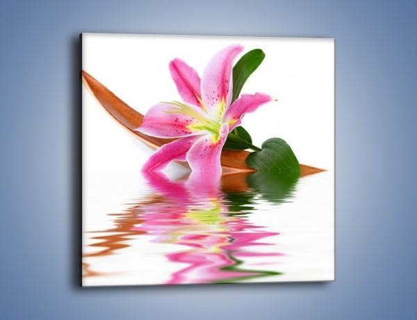 Obraz na płótnie – Odbicie wodne lilii – jednoczęściowy kwadratowy K142