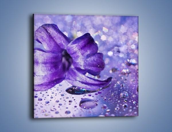 Obraz na płótnie – Fioletowy kwiat wśród kropli – jednoczęściowy kwadratowy K143