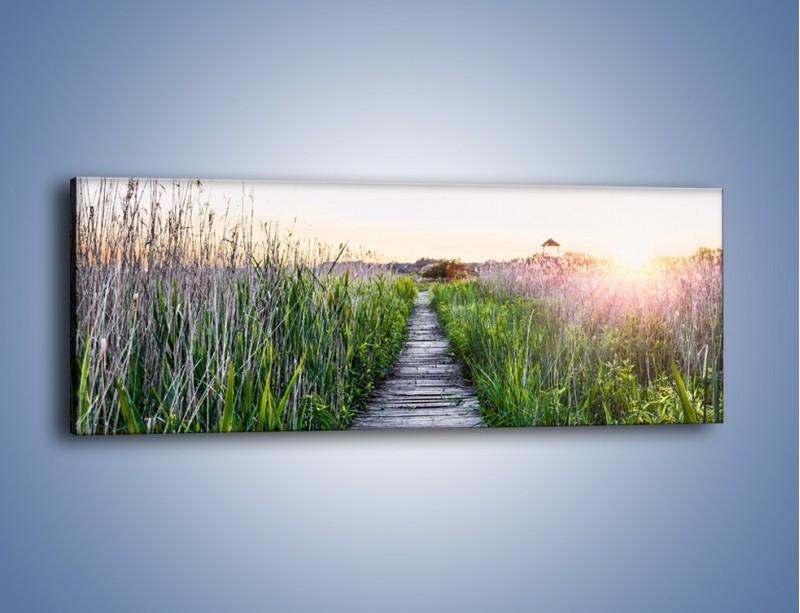 Obraz na płótnie – Kładka wśród mokradeł – jednoczęściowy panoramiczny KN1248A