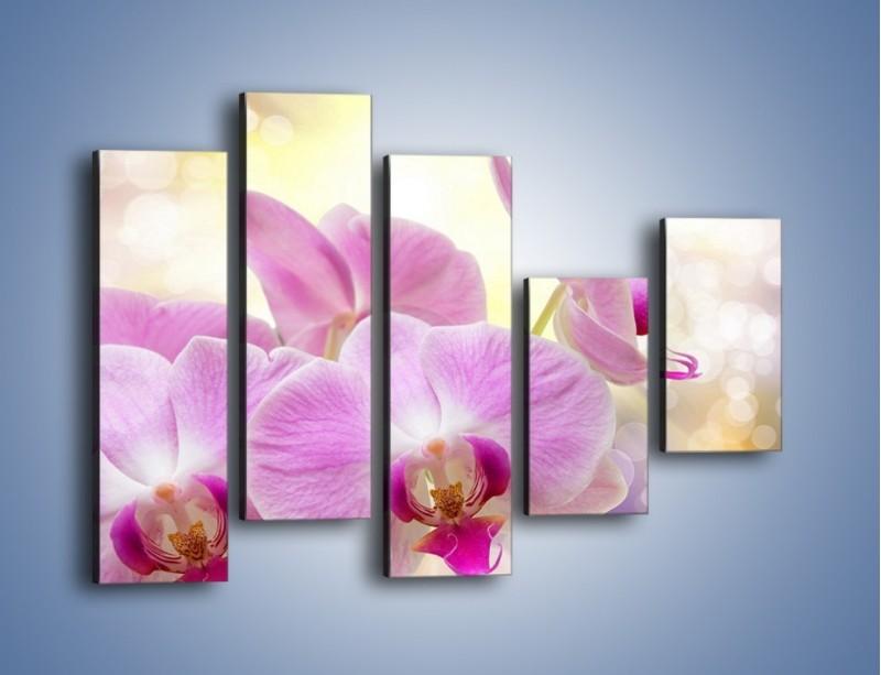 Obraz na płótnie – Lila kwiaty o poranku – pięcioczęściowy K976W4