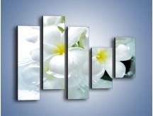 Obraz na płótnie – Białe kwiaty w potoku – pięcioczęściowy K991W4