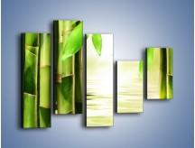 Obraz na płótnie – Bambusowe liście i łodygi – pięcioczęściowy KN027W4
