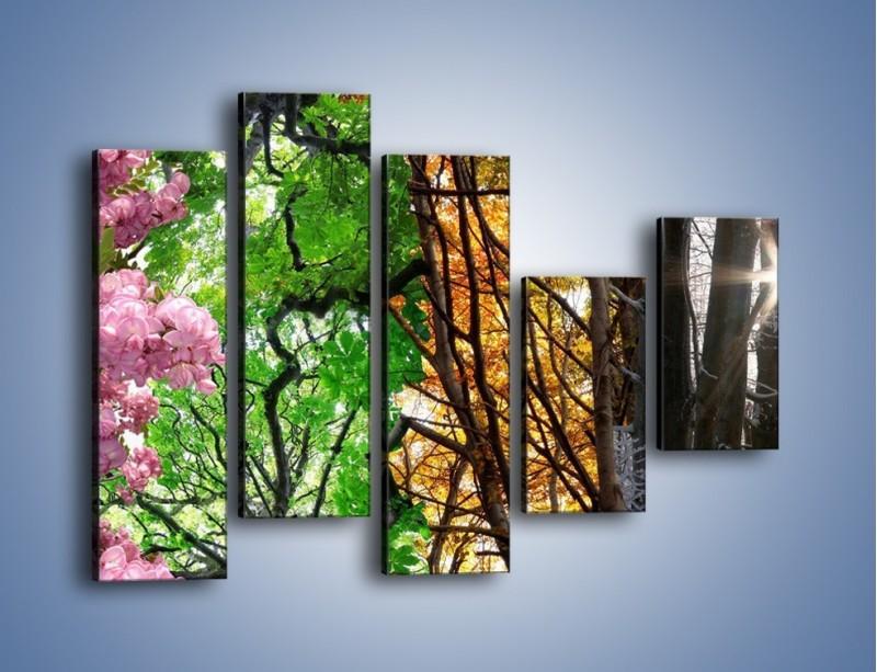 Obraz na płótnie – Drzewa w różnych kolorach – pięcioczęściowy KN037W4