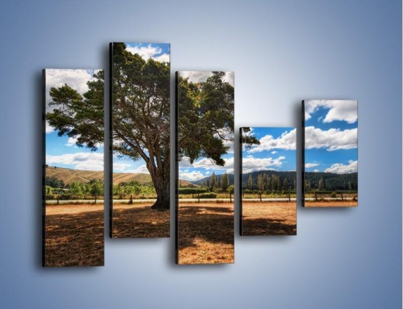 Obraz na płótnie – Cień pod rozłożystym drzewem – pięcioczęściowy KN1037W4