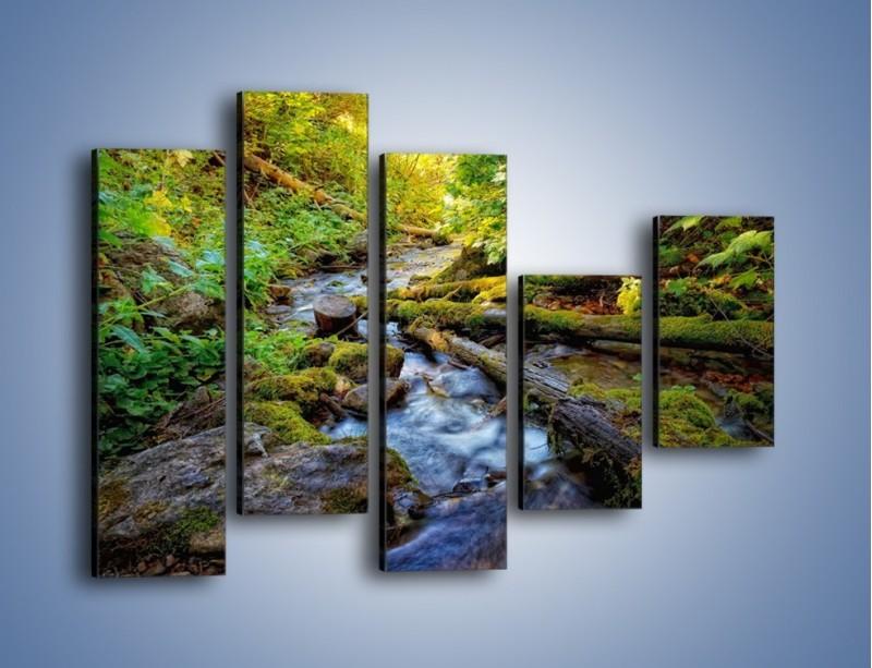 Obraz na płótnie – Drewno ścięte do wody – pięcioczęściowy KN1059W4