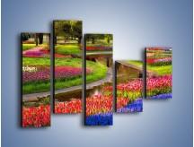 Obraz na płótnie – Aleje kolorowych tulipanów – pięcioczęściowy KN1079W4
