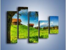 Obraz na płótnie – Chatki na polanie – pięcioczęściowy KN1085AW4