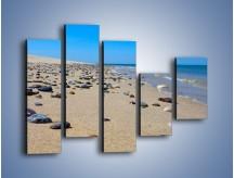 Obraz na płótnie – Całe morze kamyczków – pięcioczęściowy KN1086AW4