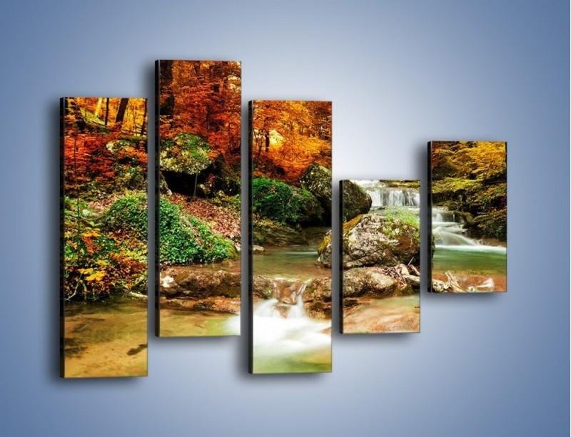 Obraz na płótnie – Jesienne kolory w lesie – pięcioczęściowy KN1094AW4