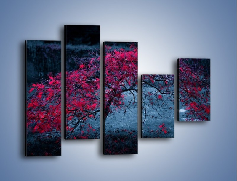 Obraz na płótnie – Czerwone płaczące drzewo – pięcioczęściowy KN1101AW4