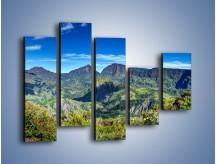 Obraz na płótnie – Cały góry pokryte zielenią – pięcioczęściowy KN1140AW4