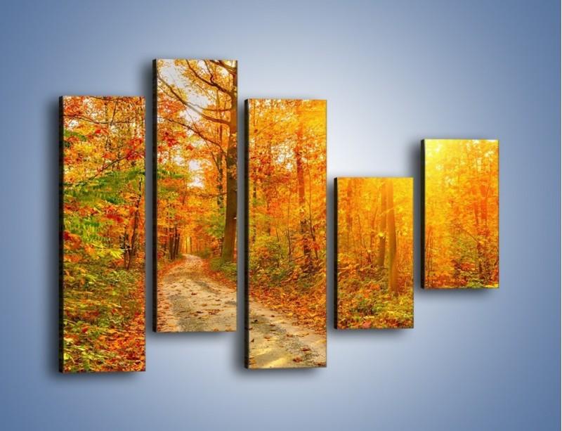 Obraz na płótnie – Leśną drużką jesienią – pięcioczęściowy KN1163AW4
