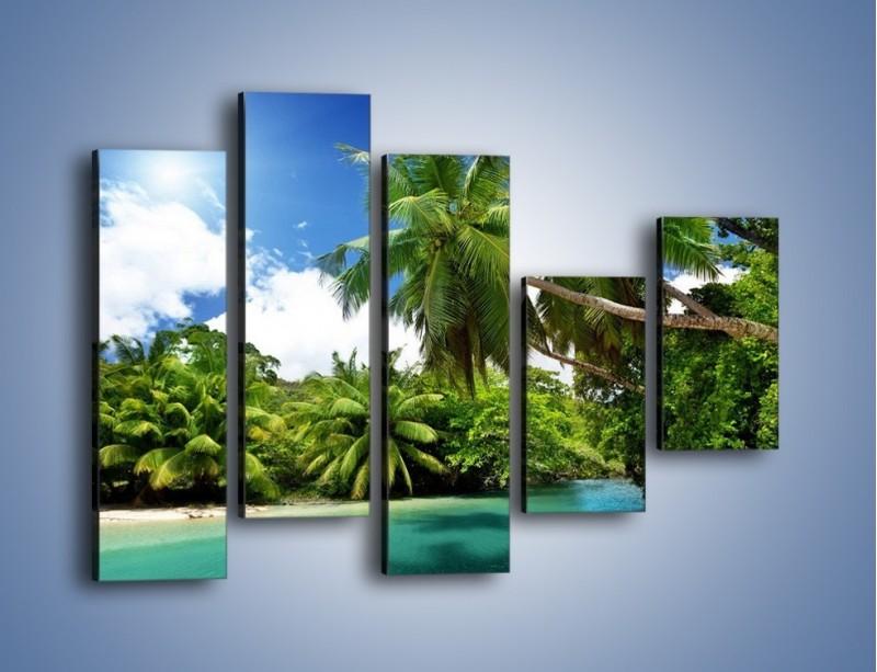 Obraz na płótnie – Rozłożone palmy i woda – pięcioczęściowy KN1168AW4