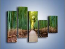 Obraz na płótnie – Bambusowy las – pięcioczęściowy KN1187AW4
