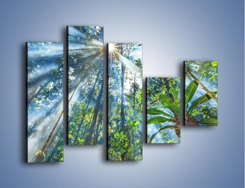 Obraz na płótnie – Dyzio marzyciel i drzewa – pięcioczęściowy KN1189AW4