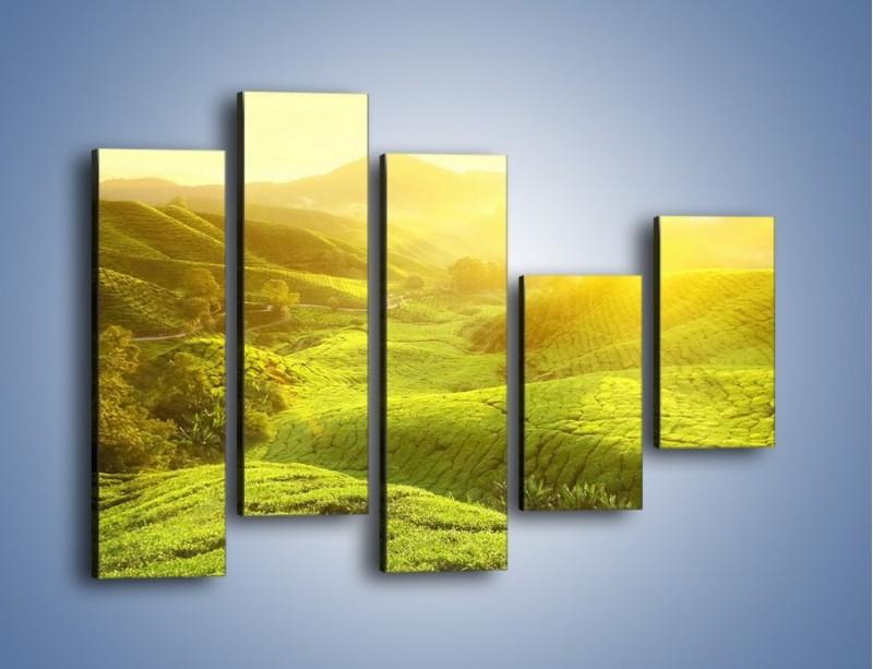 Obraz na płótnie – Zieleń w dolinie – pięcioczęściowy KN1204AW4
