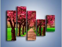 Obraz na płótnie – Aleja kwitnącej wiśni – pięcioczęściowy KN1238AW4