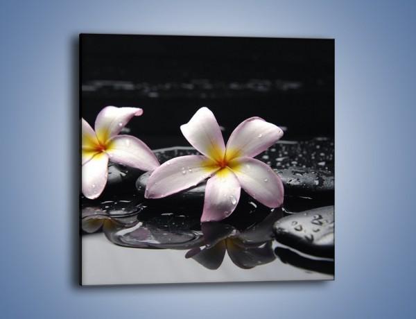 Obraz na płótnie – Delikatne kwiaty w kąpieli wodnej – jednoczęściowy kwadratowy K157