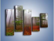 Obraz na płótnie – Budzący się lasek – pięcioczęściowy KN1285AW4