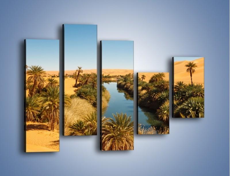 Obraz na płótnie – Woda woda na pustyni – pięcioczęściowy KN1294AW4
