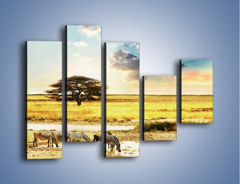Obraz na płótnie – Zebry na sawannie – pięcioczęściowy KN1298AW4