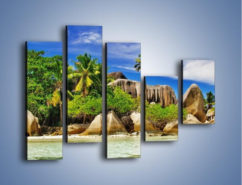 Obraz na płótnie – Tropiki i ich wysokości – pięcioczęściowy KN1306AW4