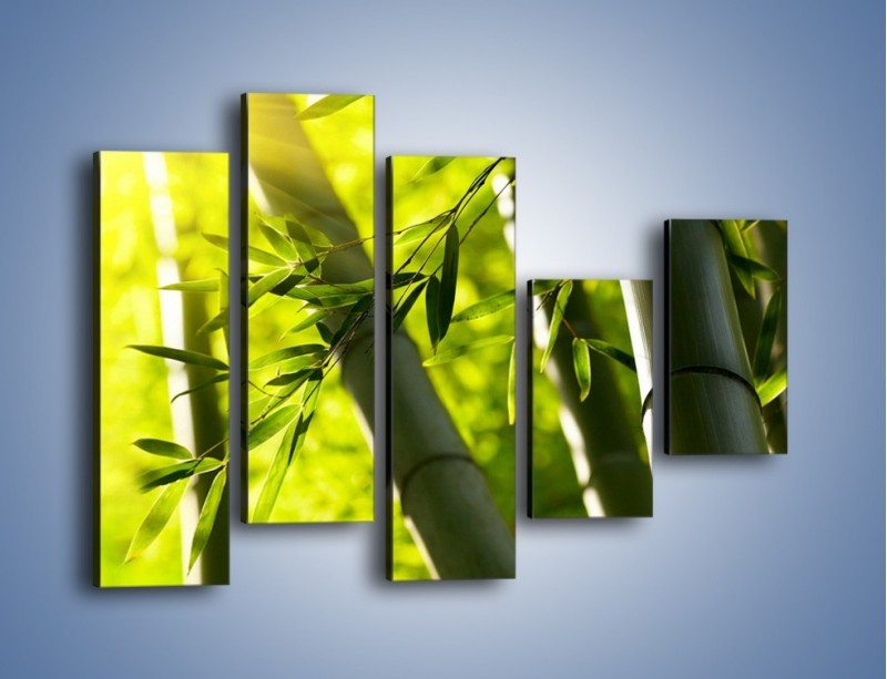 Obraz na płótnie – Twarde łodygi bambusa – pięcioczęściowy KN1314AW4