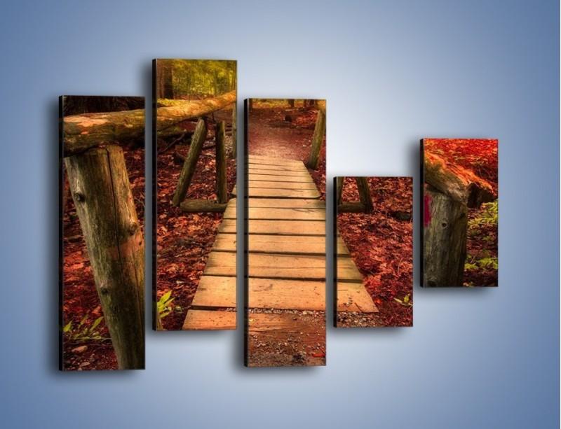 Obraz na płótnie – Krótkie przejście przez las – pięcioczęściowy KN1330AW4