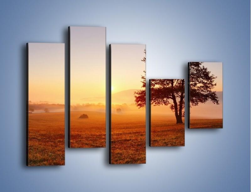 Obraz na płótnie – Krajobraz utopiony we mgle – pięcioczęściowy KN1331AW4