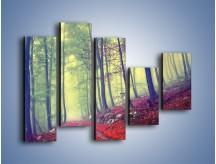 Obraz na płótnie – Bardzo wąską ścieżką leśną – pięcioczęściowy KN1335AW4