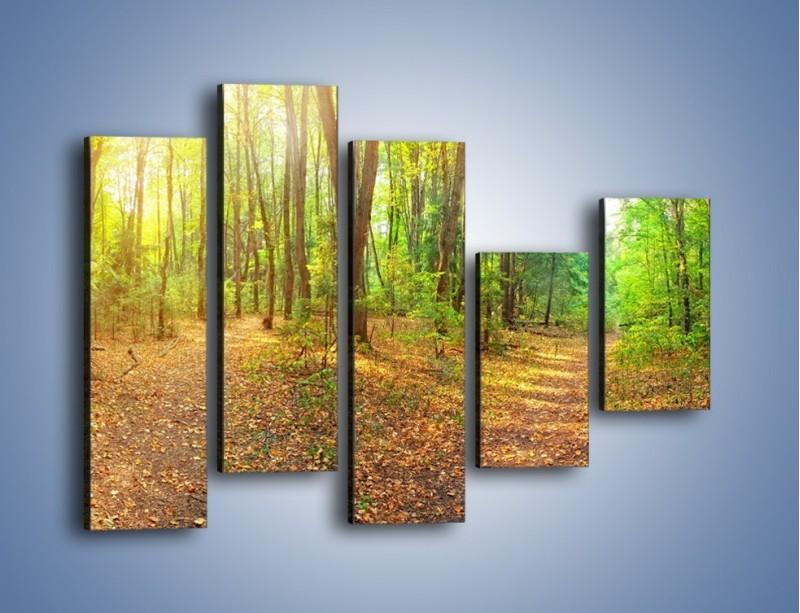 Obraz na płótnie – Przejrzysty piękny las – pięcioczęściowy KN1344AW4