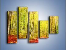 Obraz na płótnie – Brzózki liście i las – pięcioczęściowy KN1345AW4