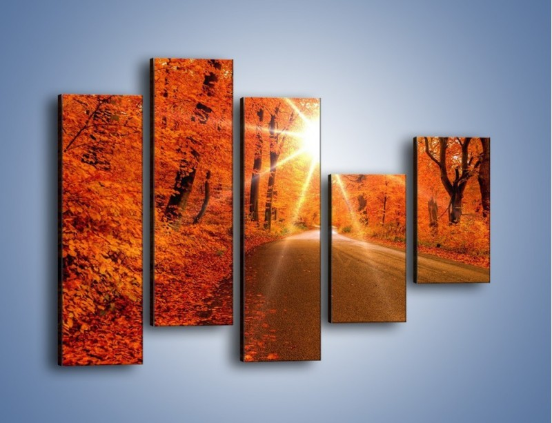 Obraz na płótnie – Droga pełna słońca – pięcioczęściowy KN160W4