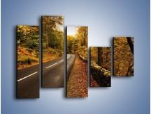 Obraz na płótnie – Asfaltową droga przez las – pięcioczęściowy KN169W4