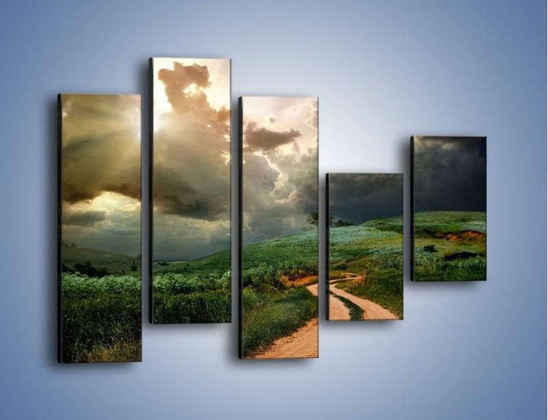 Obraz na płótnie – Krętą ścieżką przez łąkę – pięcioczęściowy KN468W4