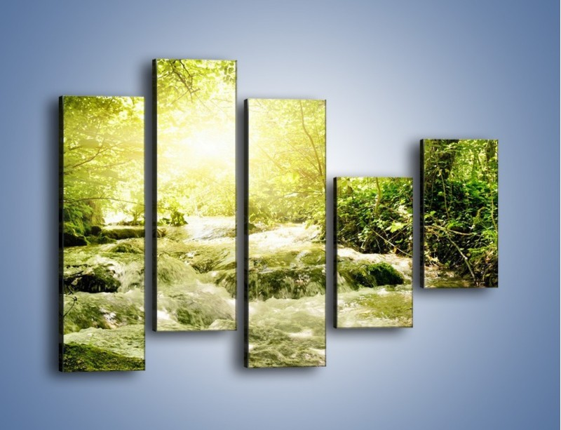 Obraz na płótnie – Wzburzony potok leśny – pięcioczęściowy KN508W4